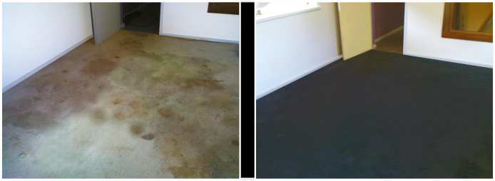 carpet dyeing in a house